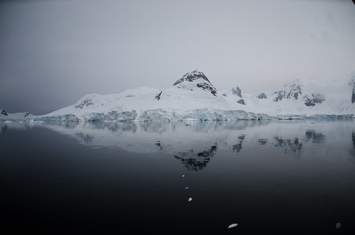 Reflection at Paradise Bay, Antarctica