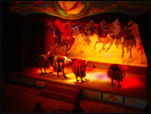 Baile Cancán (2)