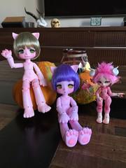 Happy family  #enaibi #bubblegum #carmalyne #kinoko #kinokojuice #nia #haine #antirecast #artistdoll #bjd #balljointdoll #doll (chemicalstar) Tags: enaibi bubblegum carmalyne kinoko kinokojuice nia haine antirecast artistdoll bjd balljointdoll doll
