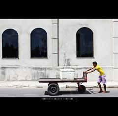 Carga pesada (Tarcsio Schnaider) Tags: brazil yellow brasil canon rebel amazon amarelo caixa rua homem par carrinho bragana oliveira tarcisio amaznia carga 550d frenteafrente t2i schnaider empurrando bemflickrbembrasil canont2i canoneosrebelt2i