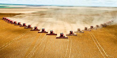 soy farming in brazil