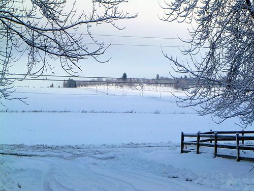 snow 12-3-10