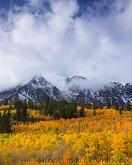 Parker Peak in Fall.  October 17, 2010 (Robert Pearce Photography) Tags: california trees light orange cloud mountain snow fall yellow landscape october rocks aspens folliage 2010 parkerpeak easternsierra clearingstorm nikond200 parkerridge robertpearce robertpearcephotography