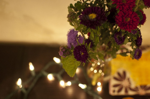flowers, lights