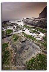 4 Mile Beach (hazarika) Tags: california longexposure santacruz seascape 4milebeach hwy1 sigma1020 canoneos50d canon50d bw10stopndfilter seatosummitworkshop lee06hardstepgnd