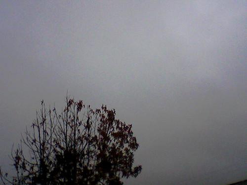 grey skies.