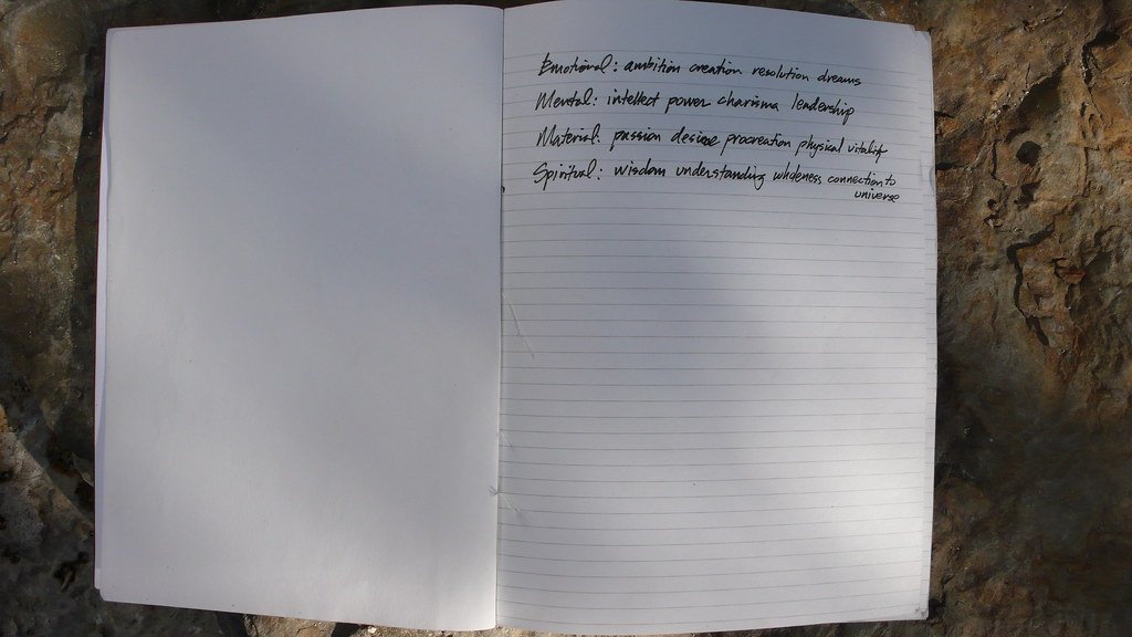 Something I wrote on the first page of the journal below...