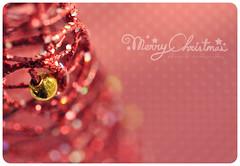 { Merry Christmas !!!! } (B@rbar@ (Barbara Palmisano)) Tags: christmas red macro nikon bokeh di merry nikkor albero natale rosso pois ohhh auguri uggs regali feste sfocato natalizio theperfectpinkdiamond httpbarbaraphotographyblogspotcom