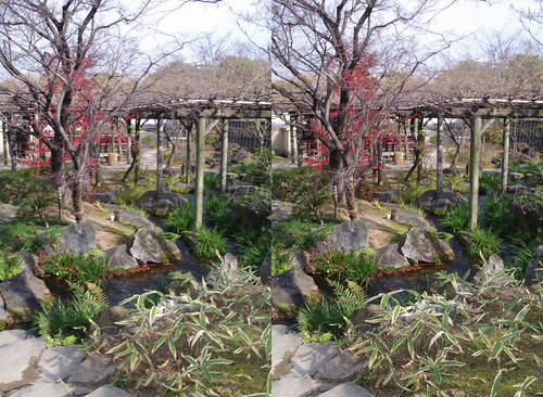 Koko-en garden, stereo parallel view