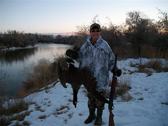 A Goose (wyo92) Tags: canada river geese big hunting canadian goose wyoming bighorn horn waterfowl worland