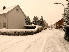Weie Weihnachten (acmelucky777 (so busy right now...)) Tags: schnee winter germany deutschland panasonic nrw weihnacht dmc 2010 westfalen fz50 weise nordrhein alsdorf 1420663