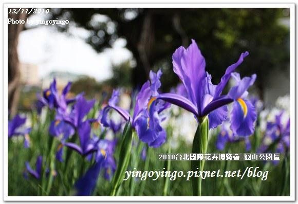 2010花博_圓山公園區991211_I5699