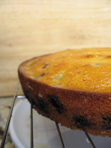 lemon cornmeal cake with blueberries