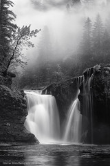 Foggy Falls (Darren White Photography) Tags: blackandwhite mist nature water fog canon river landscape northwest scenic waterfalls washingtonstate pacifcnorthwest 70200is lowerlewisriverfalls darrenwhite lewisriverfalls outdoorphotographer natureinblackandwhite darrenwhitephotography 5dmkii blackandwhitewaterfalls