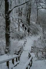 Schneeaufnahme Treppen vom Wall Wikinger Museum Haithabu WHH 19-12-2010