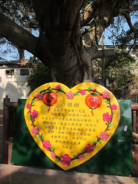 Saturday Excursion to Lei Yue Mun