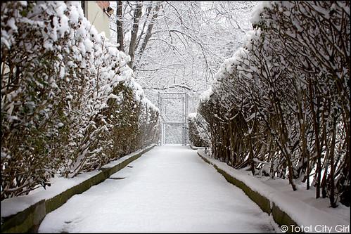snow0107-5