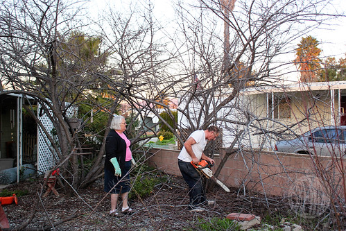 Mom assists with the chainsawing