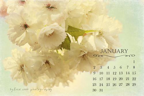 IMG_2318-calendar