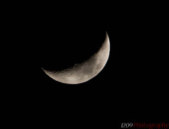 January's Moon (139-365) (Ashey1209) Tags: sky moon night canon project dark crescent nighttime 365 project365 550d canon550d
