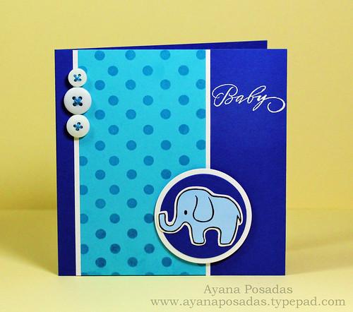Baby Elephant (2)