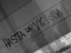 Graffiti () Tags: street flowers vacation holiday latinamerica southamerica argentina cards graffiti calle buenosaires downtown mourning politics centro corso conservative ba rightwing rtw liberal myshadow grief vacanze leftwing sympathy roundtheworld sudamerica muerto amricadosul amricalatina globetrotter southernhemisphere writingonthewall zonasul avdemayo moderate rodelaplata amriquelatine 16days hastalavictoriasiempre  sdamerika ciudadautnomadebuenosaires ciudaddebuenosaires hastalavictoria nestorkirchner worldtraveler ariannin  repblicaargentina littleeurope  republicaargentina americadelsud argentinerepublic argentinidad  nstorcarloskirchner  lareinadelplata autonomouscityofbuenosaires parisofsouthamerica avenuedemayo ciudaddenuestraseorasantamaradelbuenayre cityofourladysaintmaryofthefairwinds capitaloftango