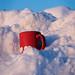 Mug in Snow