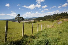 Coromandel, NZ (C) 2010