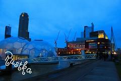 Rustka-4678 (rustka) Tags: rotterdam nightscene floatingpavilion