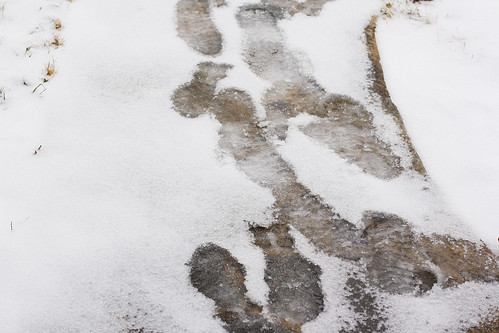 icy footprints