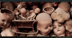 The doll shop, rome, january 2011 (m.finerty) Tags: italy rome ass broken toys dolls tits fuck creepy heads macabre