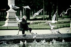 L'homme aux oiseaux / The BirdMan (elricobb) Tags: paris tower canon eos is tour eiffeltower eiffel ii toureiffel 7d erik usm ef70200mm f28l top200 canoneos7d canon7d ef70200mmf28lisiiusm erikbeauvalot beauvalot