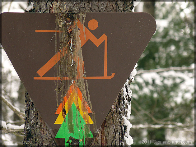 P1130731_centennial_park_ski