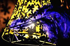 28 - Jo Claravall - Alice In Wonderland Pena Bellevue - January 6, 2011 (JR Rodriguez IV) Tags: camera city light club night dark de joseph nose photography lights evening george big nikon nocturnal phil metro martha alice low philippines jose mcgee jo jr dirty mc stewart photograph american manila bignose dozen member nikkor gee dd studios wonderland iv nocturne qc rodriguez quezon guzman ccp phils philippine dirtydozen d90 probee d700 claraval d3s jrrodrigueziv jrrodriguez cloribel claravall rodriguezjr ivrodriguez rodrigueziv jriv ivjr cllaraval cllaravall wwwbignosestudioscom wwwjrrodriguezivcom