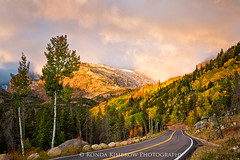 The Road to Bear Lake (RondaKimbrow) Tags: rondakimbrowphotography rockymountainnationalpark rockymountains bearlakeroad autumn fall season paved road aspen trees colorful yellow gold red green clouds sunrise scenery landscape coloradoimages coloradolandscape