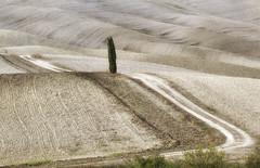 Onde (fotopierino) Tags: val dorcia colline collina onde onda campi cipresso solo unico canon 100d 70200 f4 l usm fotopierino paesaggio landscape atmosfera explore toscana paesaggi italia italy