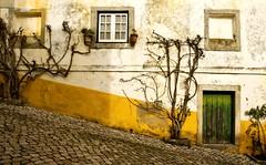 Óbidos, Portugal (Canadapt) Tags: door windows light shadow portugal wall facade óbidos canadapt