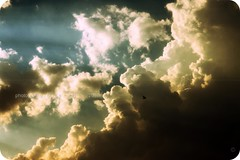 (Wings of Love ..) Tags: blue sky white bird nature canon shades scattered 500d