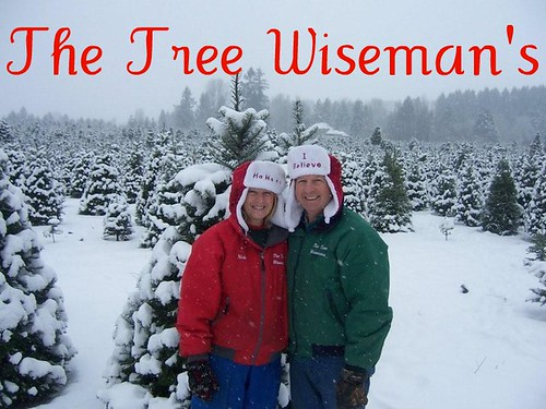The Tree Wiseman's