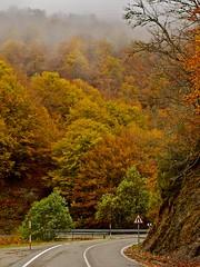 Road to paradise (A. Cascalheira) Tags: spain picosdeeuropa