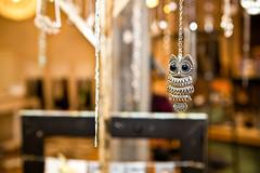owlishness (TerryJohnston) Tags: city urban retail mi store downtown dof bokeh michigan boutique owl grandrapids jewelery necklaces grap amazingmich canoneos5dmarkii 5dmarkii leebirch