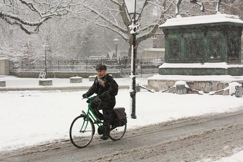 Snow - The Hague