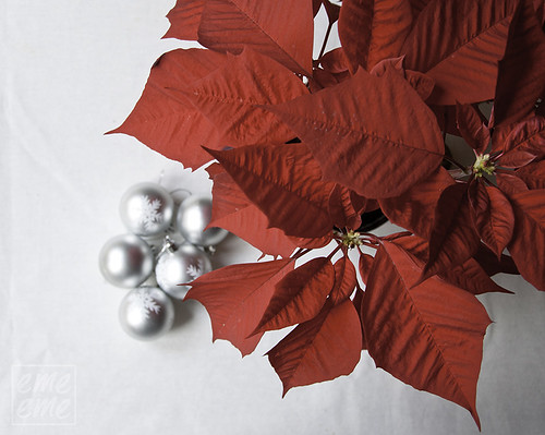 Navidad - Rojo y Plata