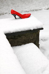 La disparition (Calinore) Tags: winter red snow cold garden lost rouge shoes object hiver jardin neige objet froid perdu chaussure escarpin marcqenbaroeul lacollection selectionneespargetty