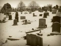 (andrewlee1967) Tags: cemetery graveyard sepia dukinfield tameside ricoh capliogx100 andrewlee1967 uk gb england britain andrewlee