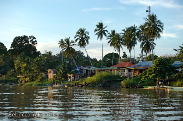 RYALE_Kinabatangan_River_51