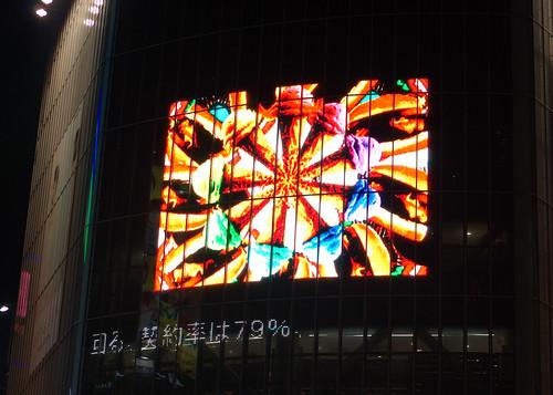 2010-05-17 Shibuya (19).DNG