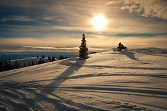 Snow Hill (Armando Martinez) Tags: sun mountain snow tree colorado warm grandlake snowmobile