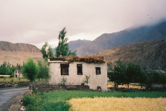 Ladakh Farmhouse (Mariasme) Tags: colour film farmhouse rural oasis 1985 ladakh jammuandkashmir herowinner