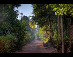 Mystic Konkan (Siddhesh Dhupe) Tags: morning india coast town nikon coastal lane hdr konkan d5000